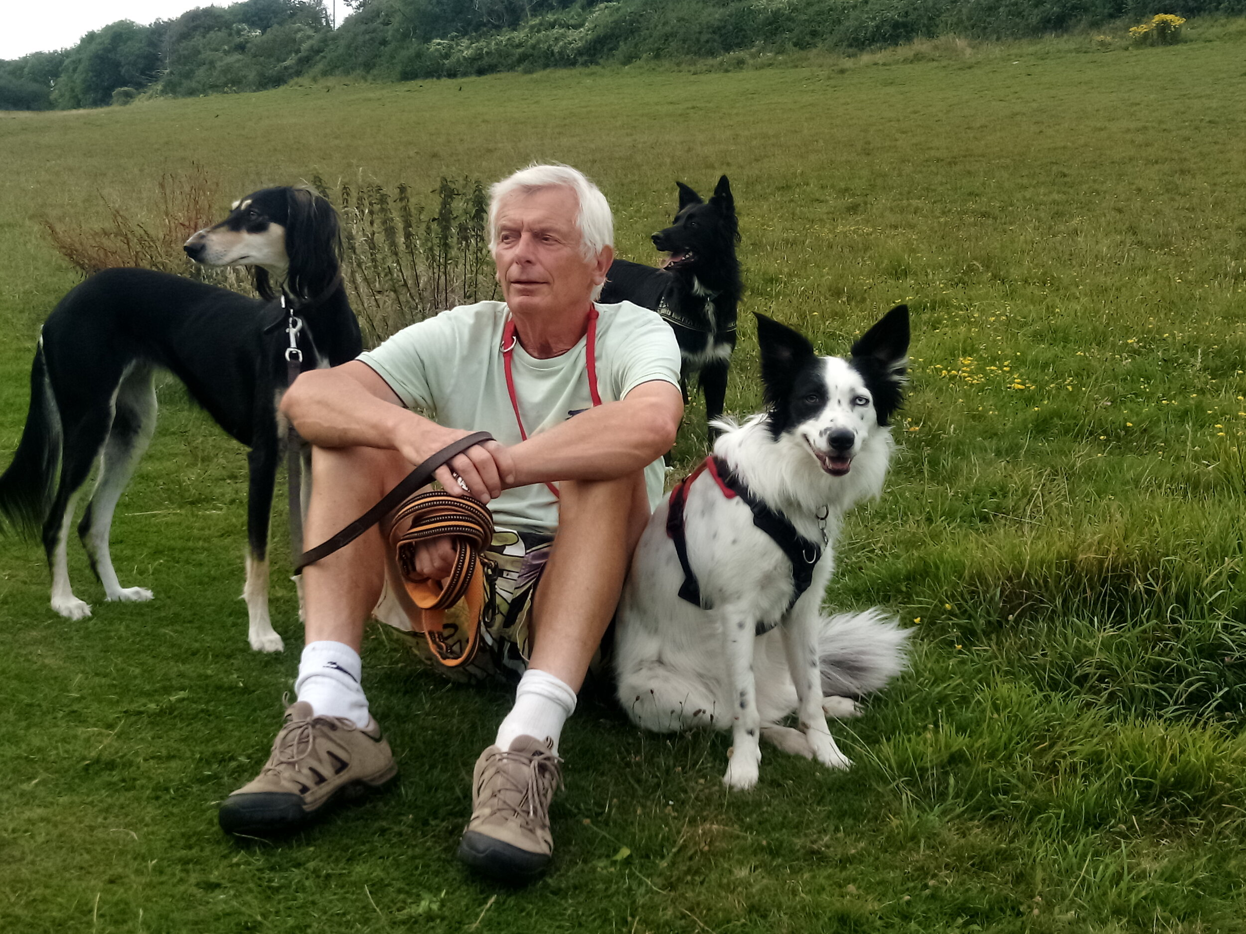 Ian with his walking companions on the South Downs.