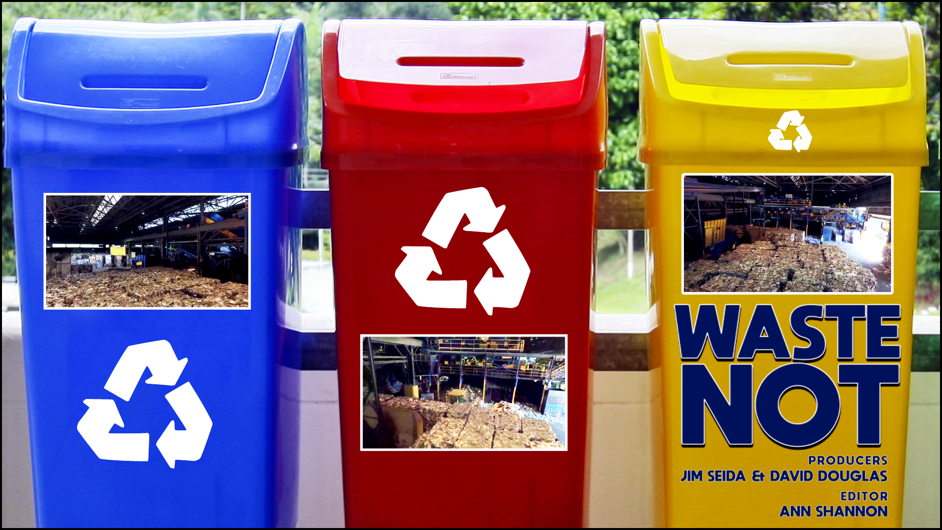 RECYCLING TIPPING POINT SPOTLIGHT.png