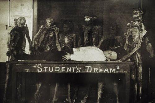 15. Cadaver class