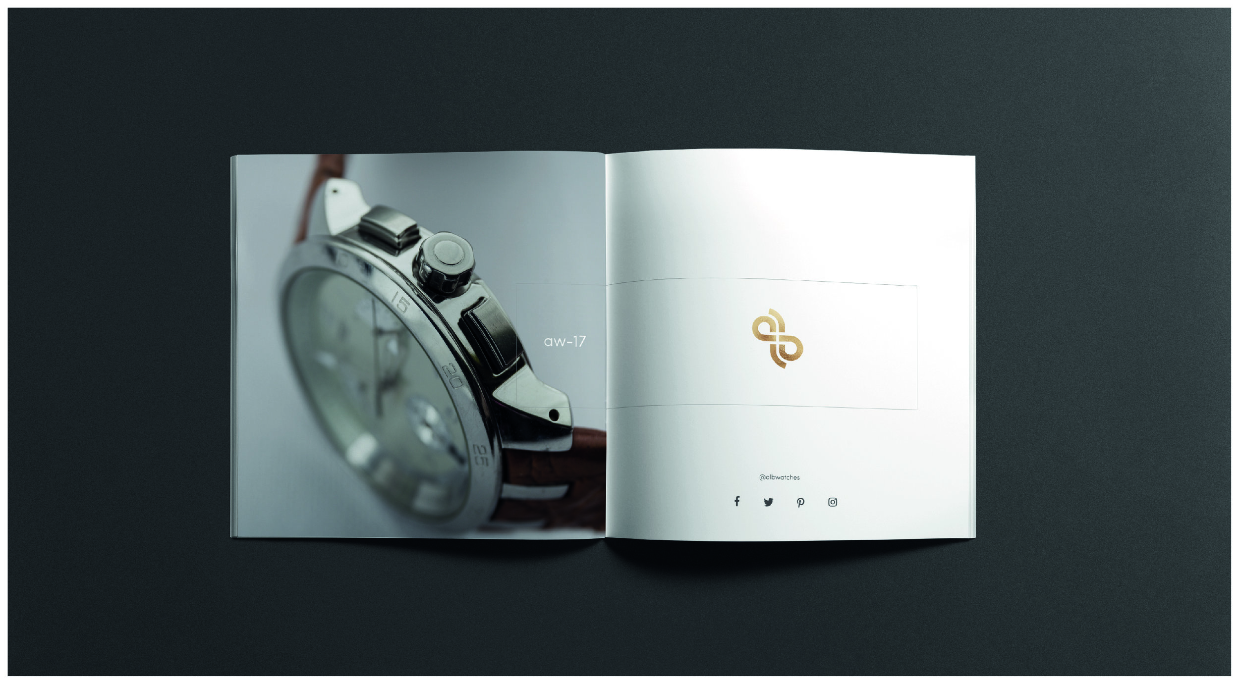 alb brochure inside 1.jpg