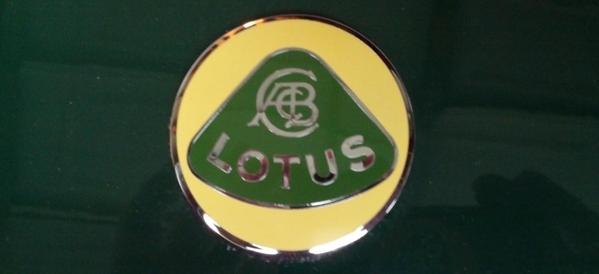 Lotus_2a.jpg