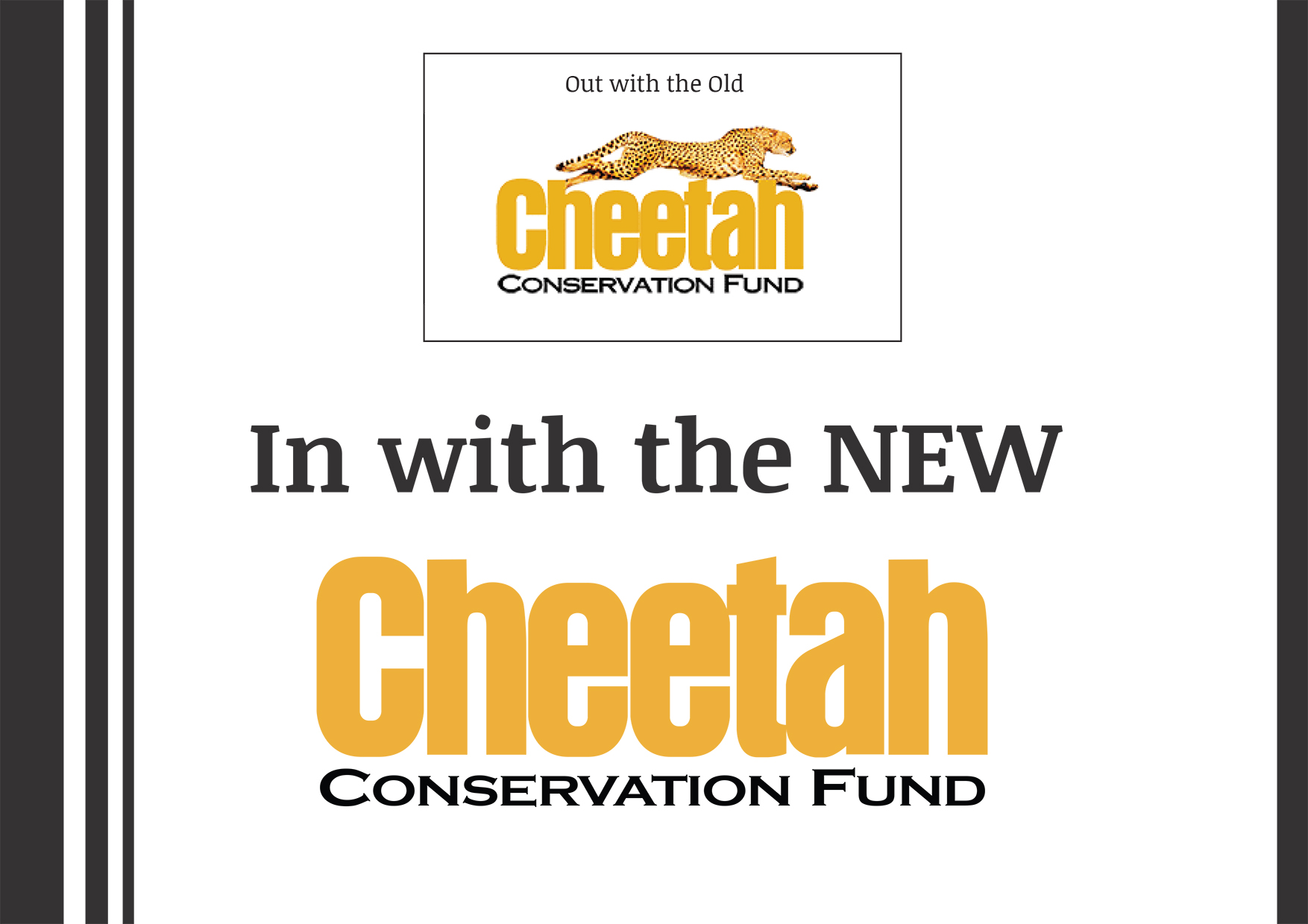 Cheetah Conservation Fund Brand Book (1)-4.jpg