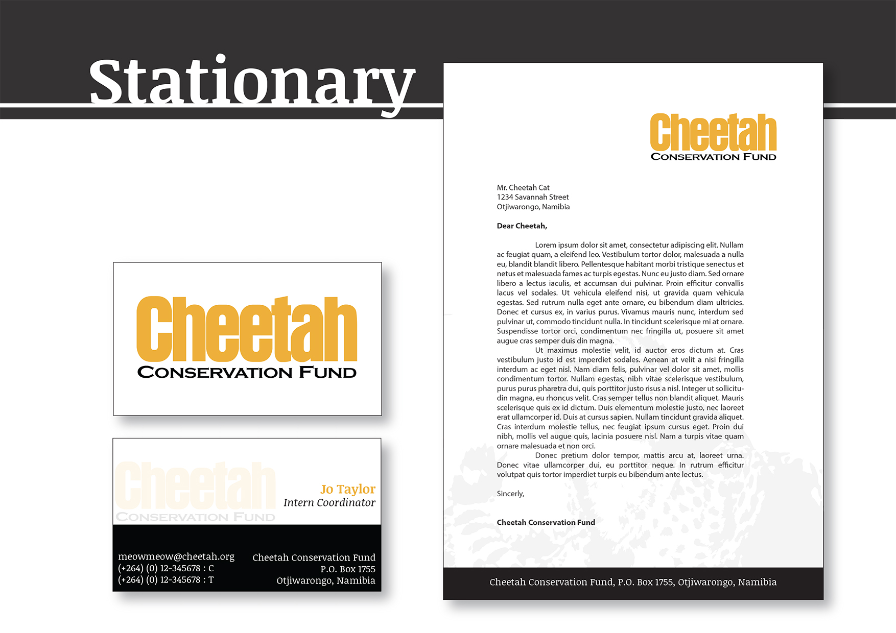 Cheetah Conservation Fund Brand Book (1)-9.jpg