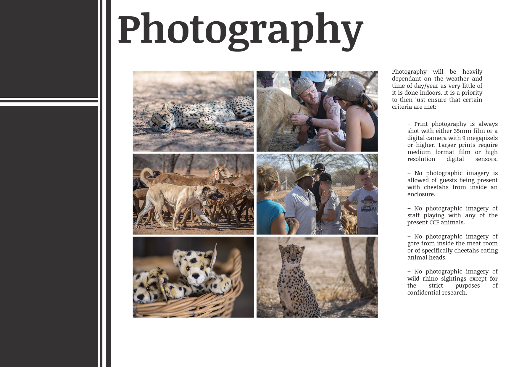 Cheetah Conservation Fund Brand Book (1)-15.jpg