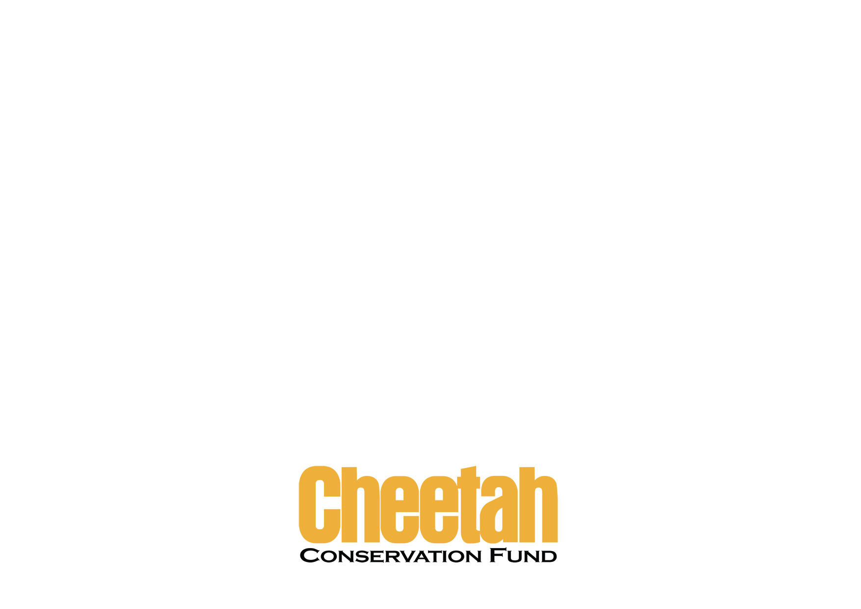Cheetah Conservation Fund Brand Book (1)-20.jpg