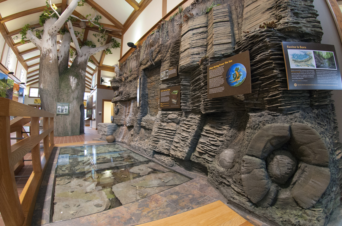 Highbanks-Nature-Center-Ravine-Wall-Rocks.jpg