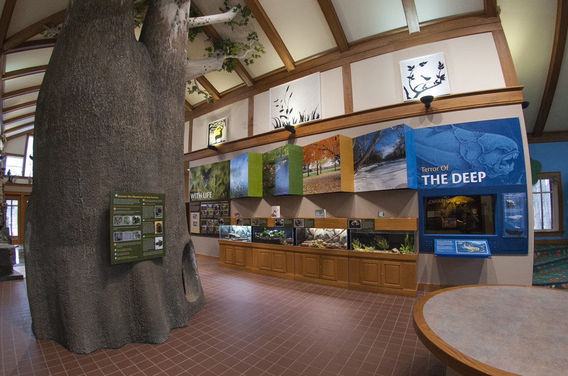 Highbanks-Nature-Center-Aquarium-Display.jpg