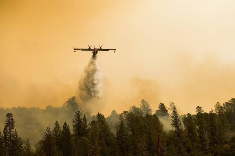 (photo by Andrew Seng, SacBee.com)