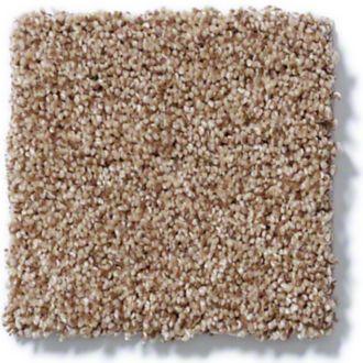 carpet swatch 2 .jpeg