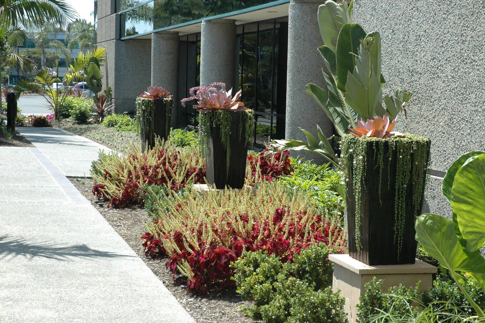 Exterior Plantscapes