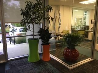 Progressive Office Plantscapes