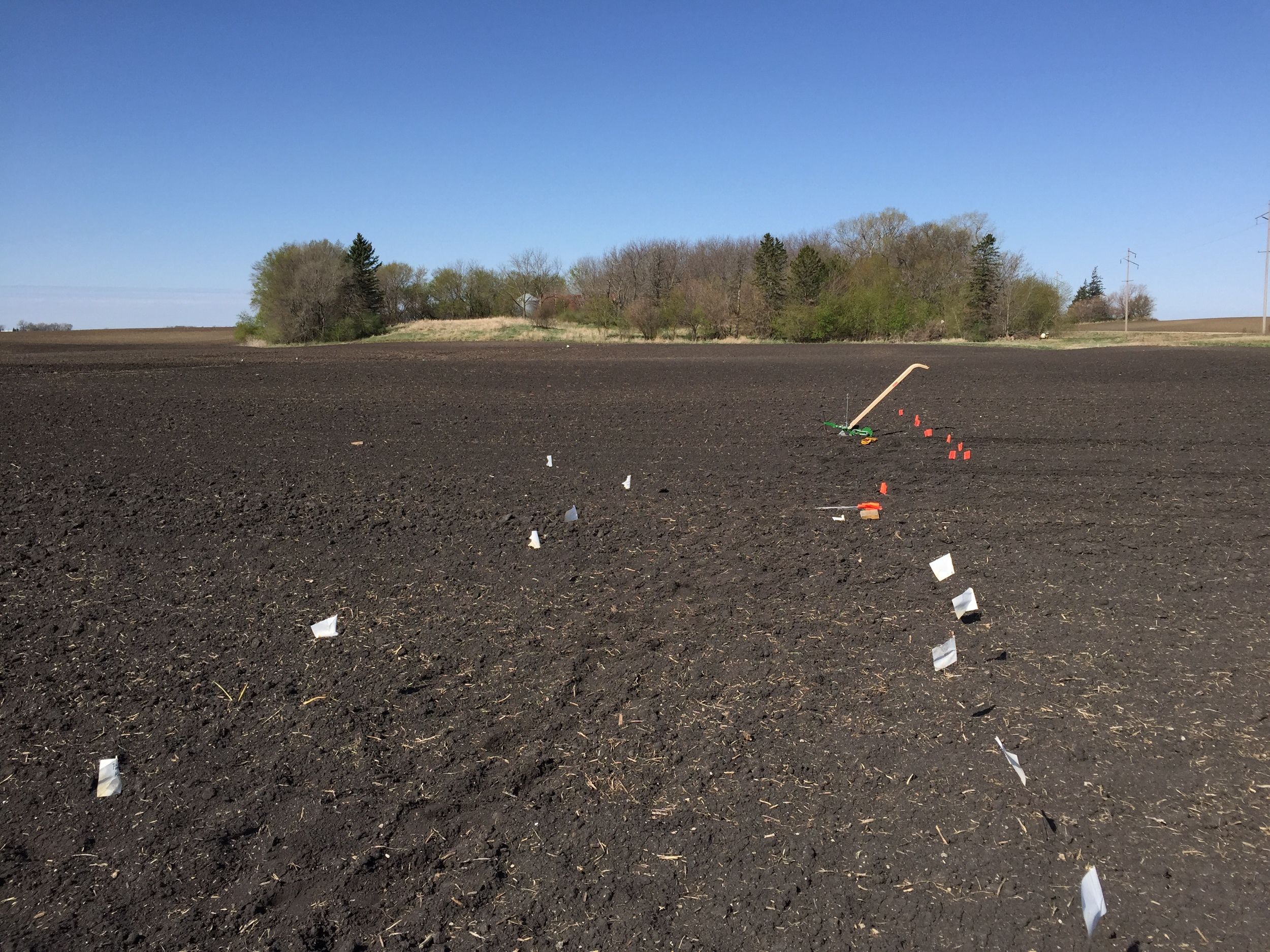 Beautiful day to plant. The flags mark rows of each crop.