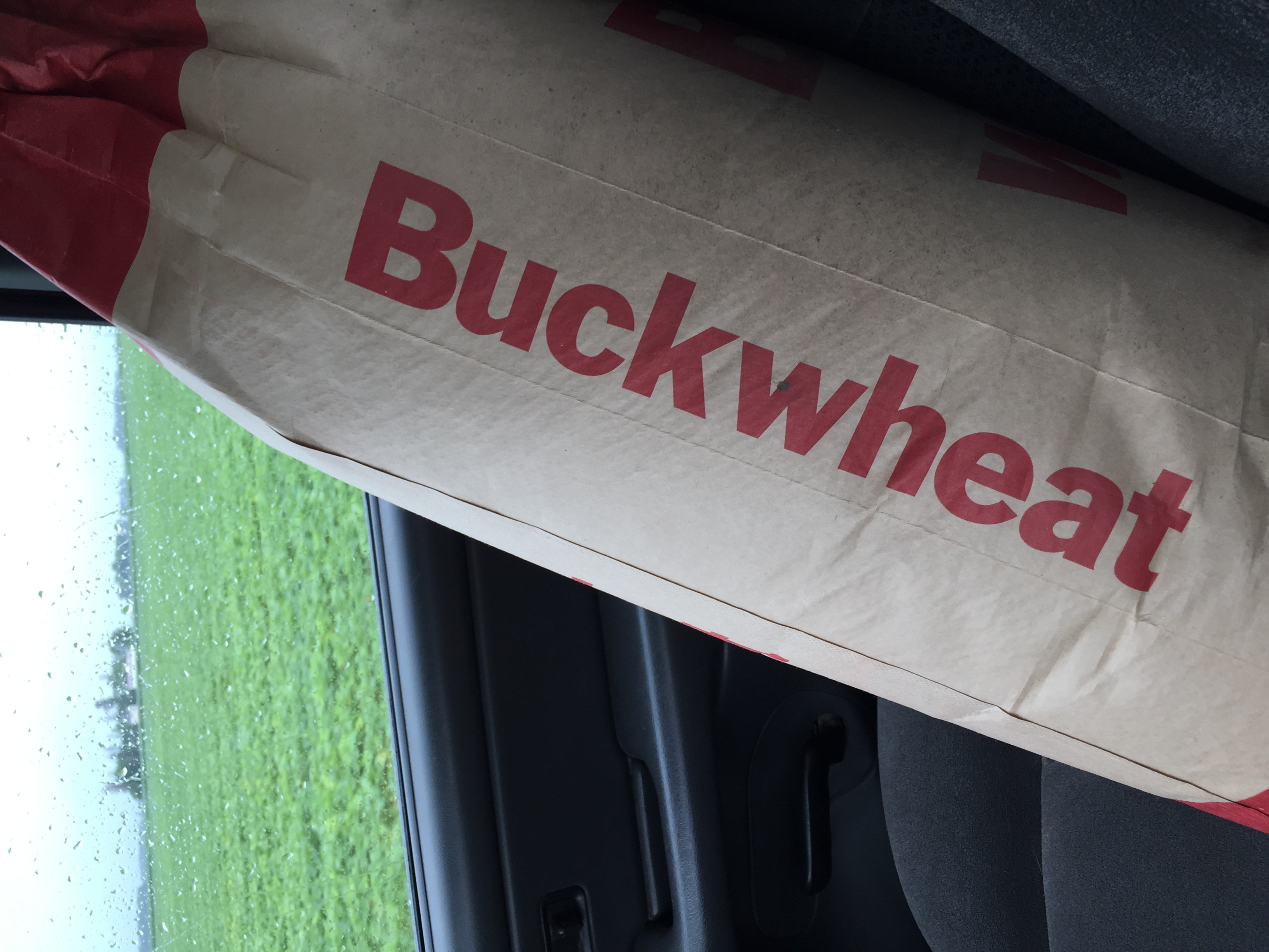 50lbs of buckwheat for cover crop. Not an excellent travel companion... ;)