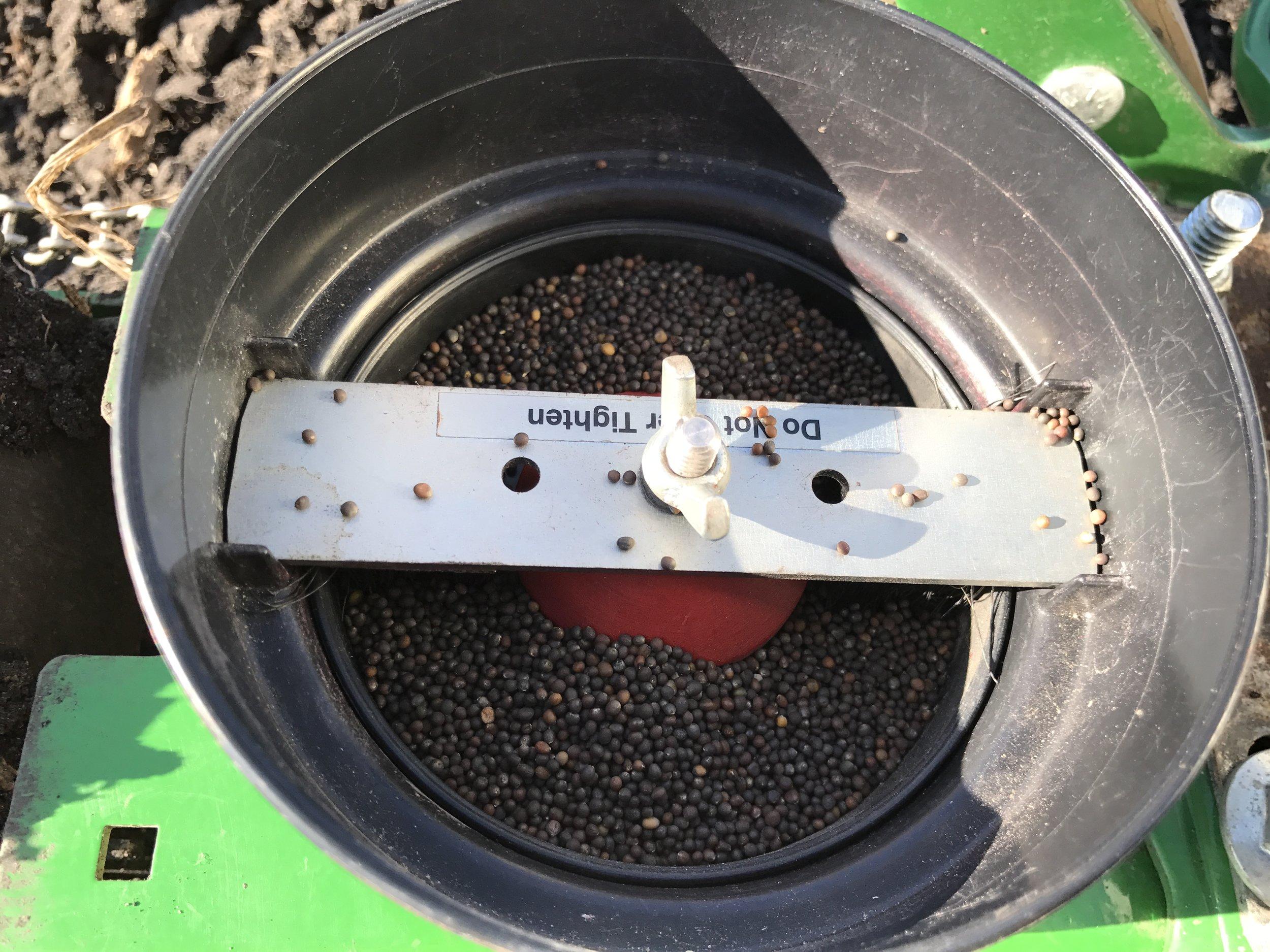 Garden Seeder