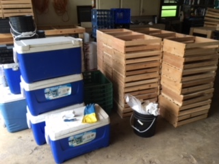 Crates and Coolers.JPG