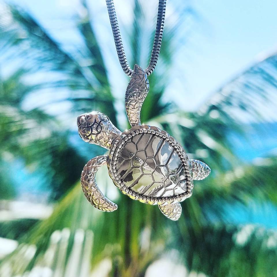 Penny_Turtle.jpg