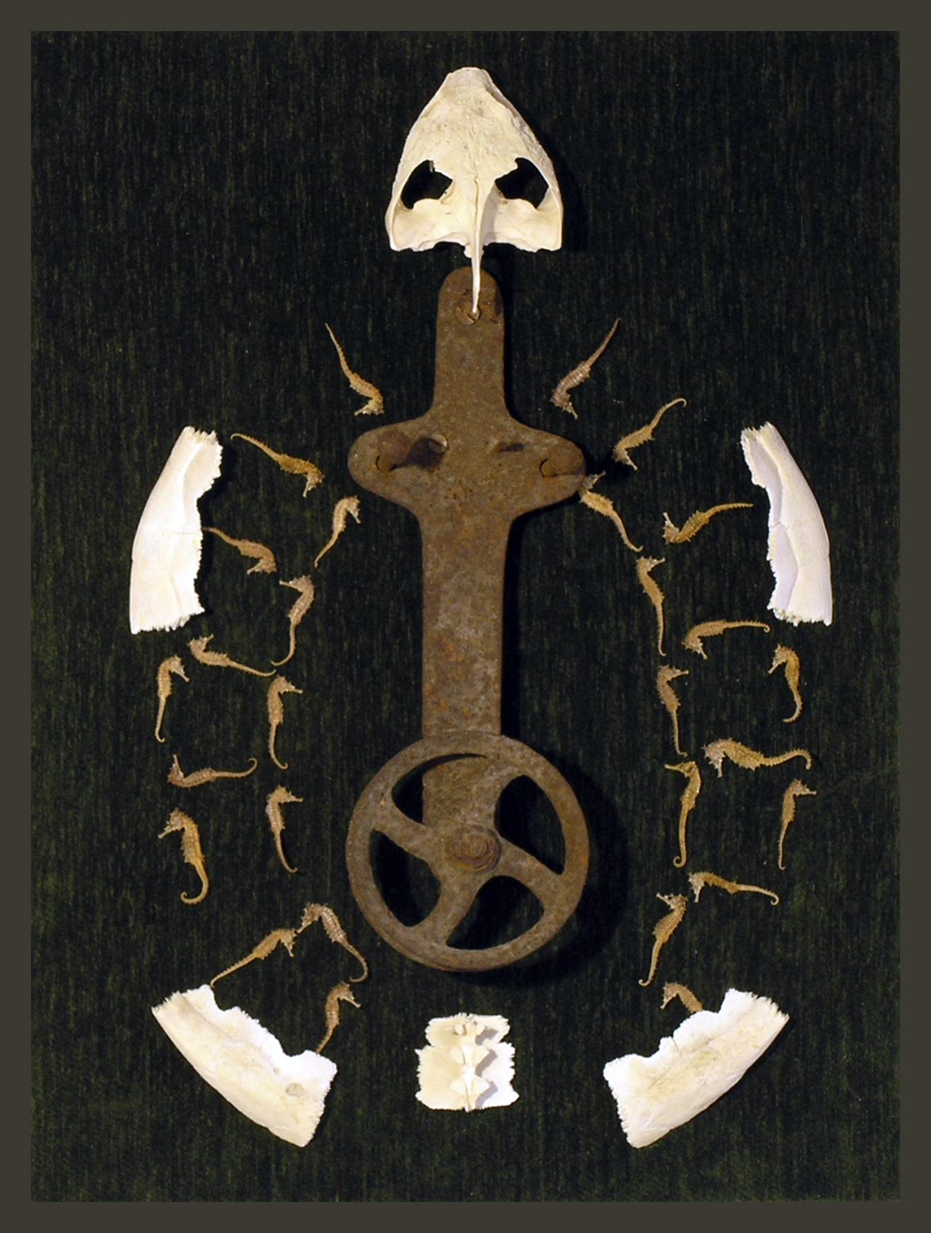 Ancient Turtle,Sculpture, LH