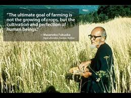 The ultimate goal of farming is not the growing of crops, but the cultivation and perfection of human beings.                      —Masanobu Fukuoka