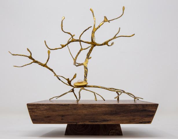 Tempo V  , Ariel Matisse