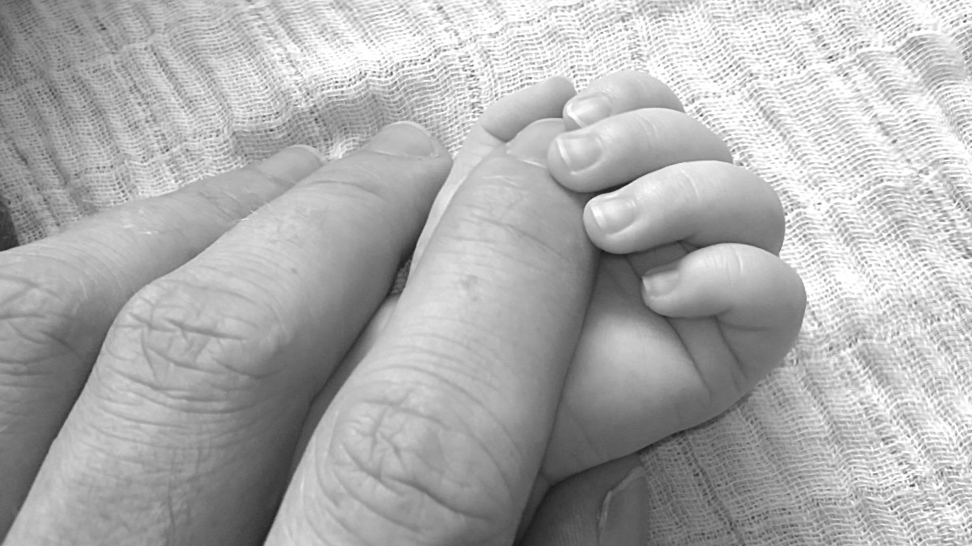 baby-203048.jpg