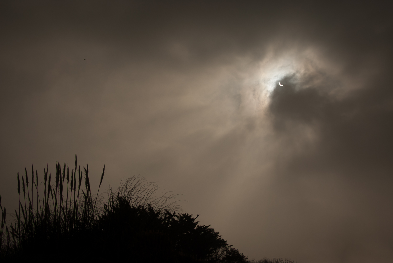 partial eclipse 6.jpg