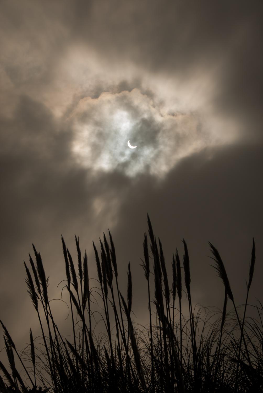 partial eclipse 4.jpg