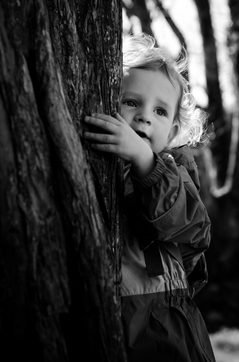 A childrens portrait of my son, black and white and with a tree.