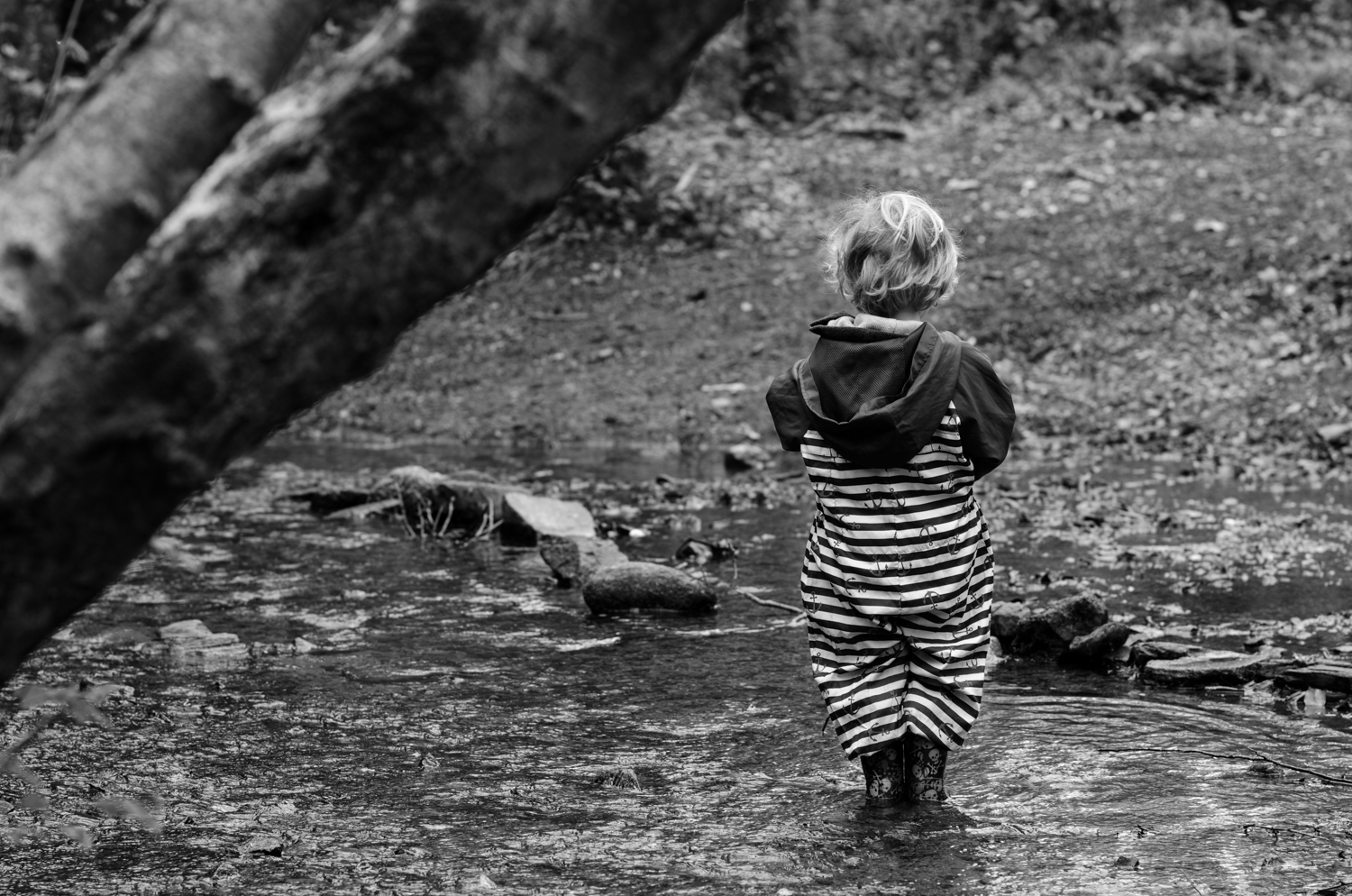 As my nephewstands and looks into the river