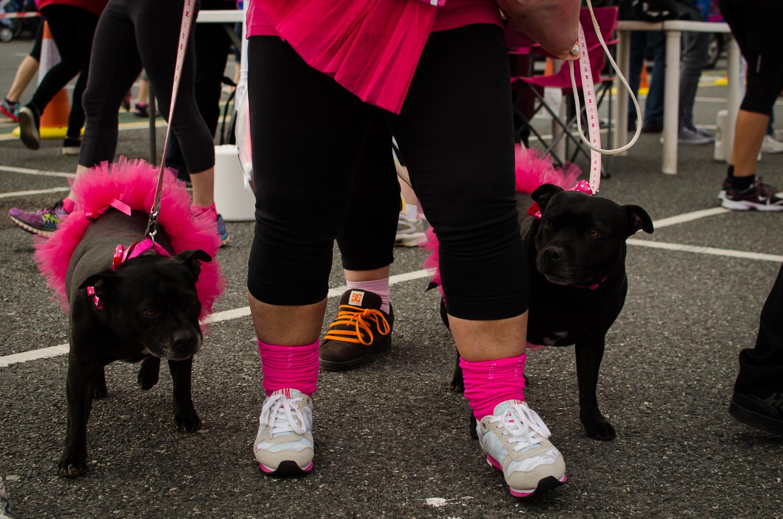 Race for life blog 2015-11.jpg