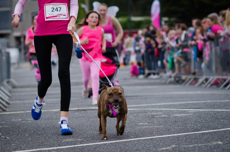 Race for life blog 2015-212.jpg