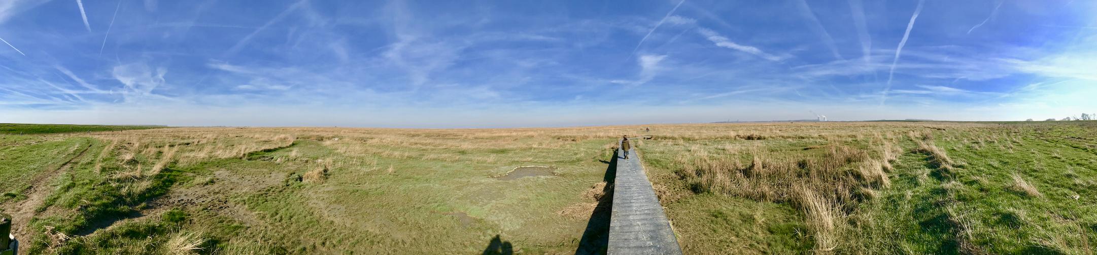 panorama saeftinghe.png