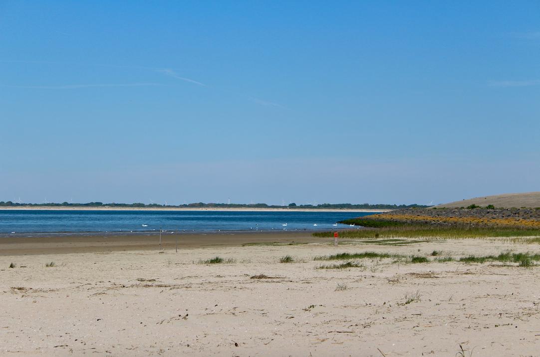 strand duinen van goeree.png