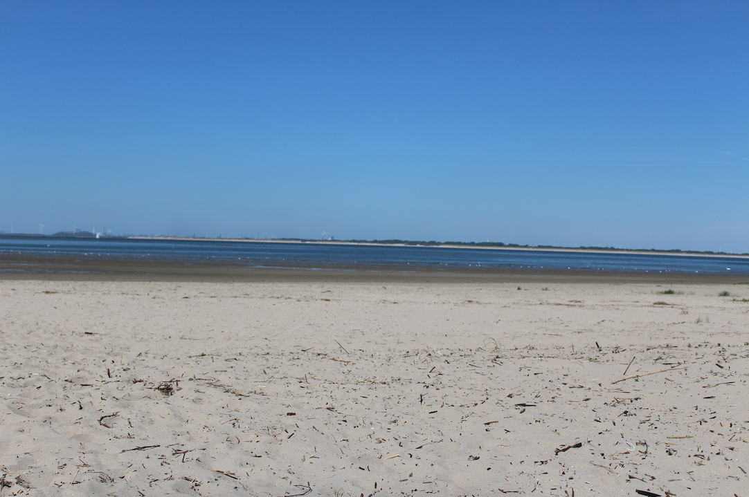 strand kwade hoek maasvlakte.png