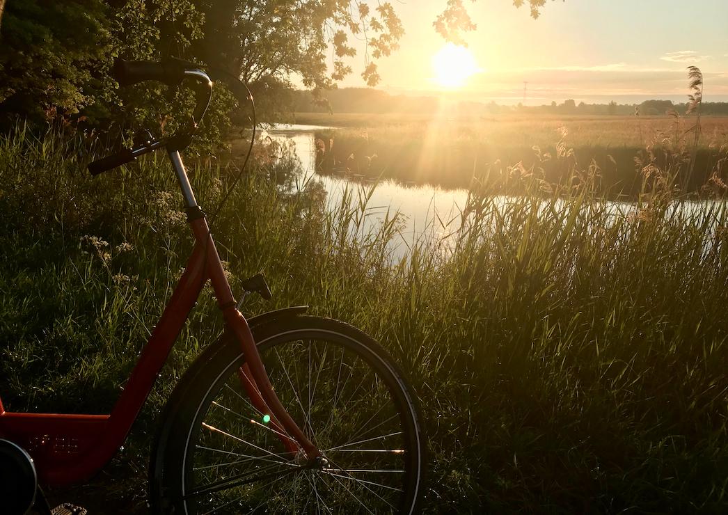 early morning bike ride biesbosch.png
