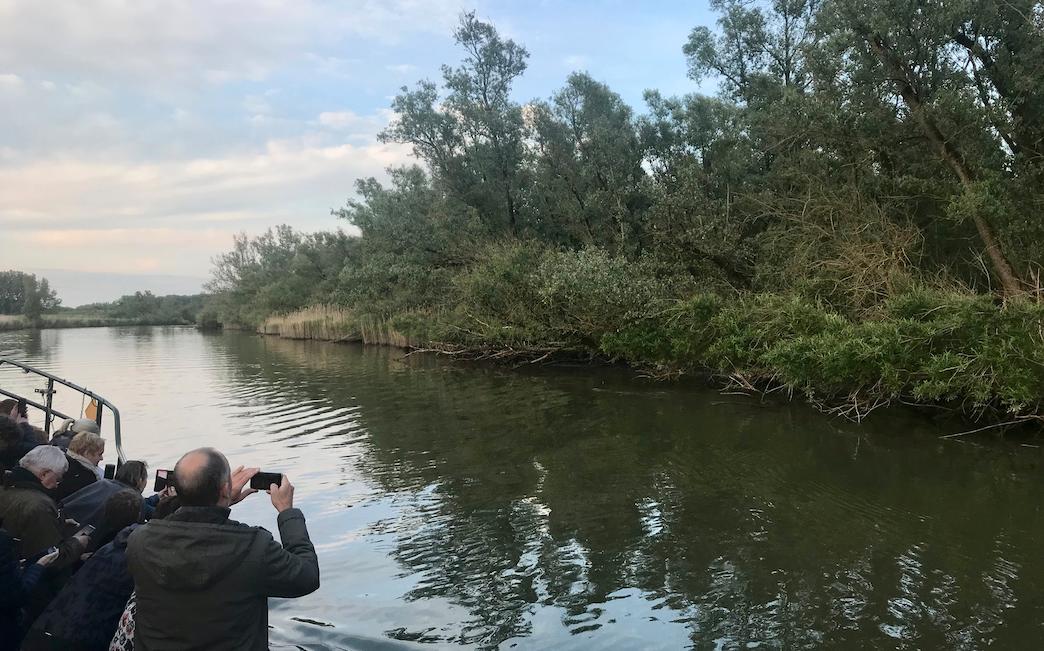 fluisterboot biesbosch.png
