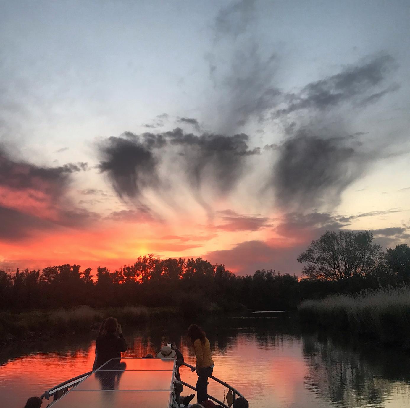 varen zonsondergang biesbosch.png