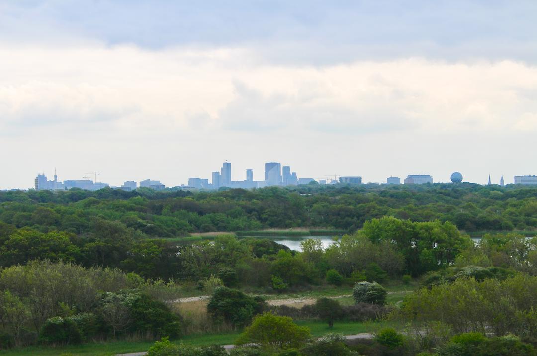 Natuur en stad vlak naast elkaar.