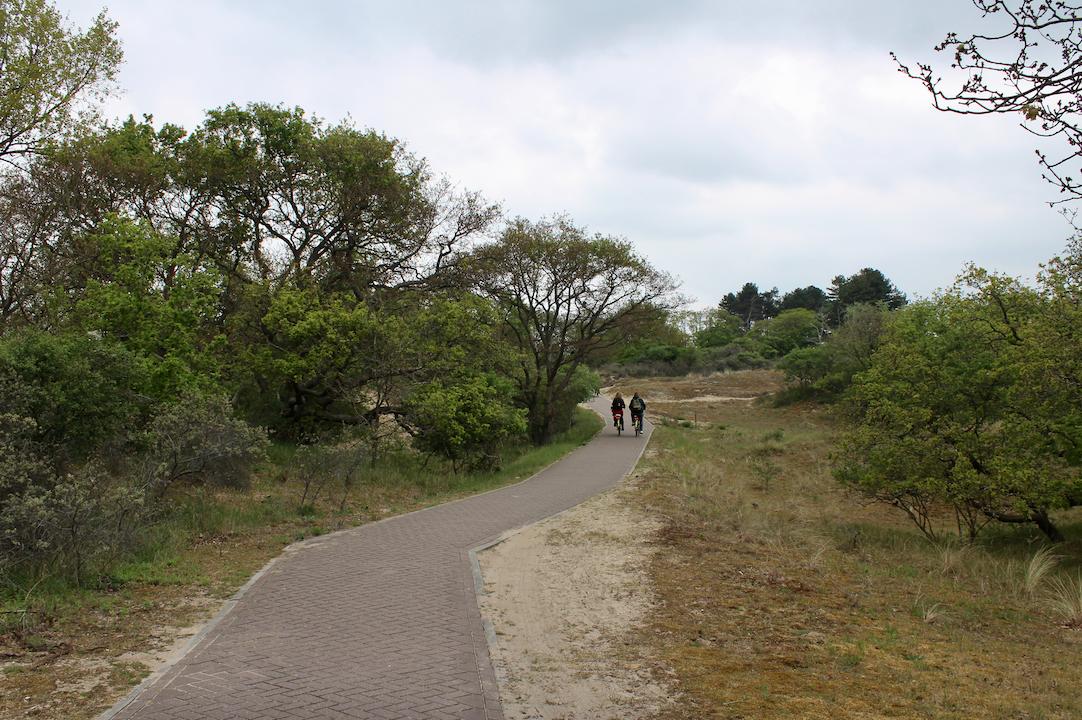 fietsen hollandse duinen.png