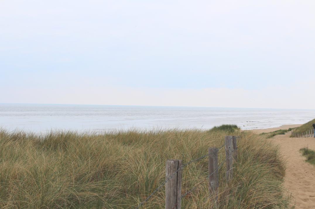 hollandse duinen noordzee.png