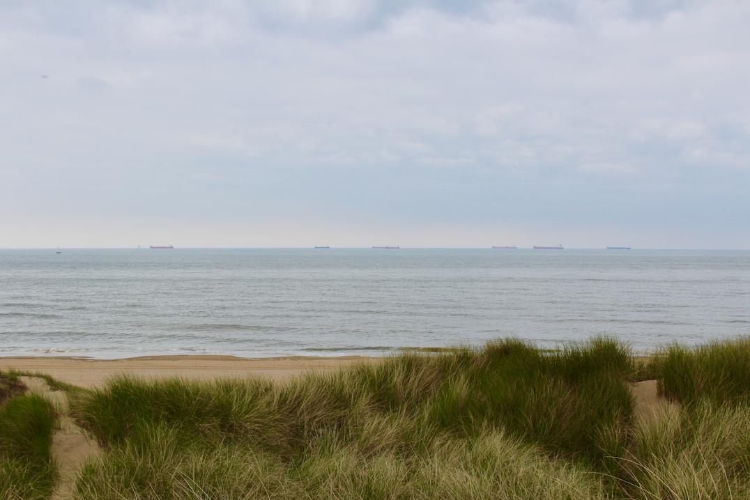hollandse duinen strand.png