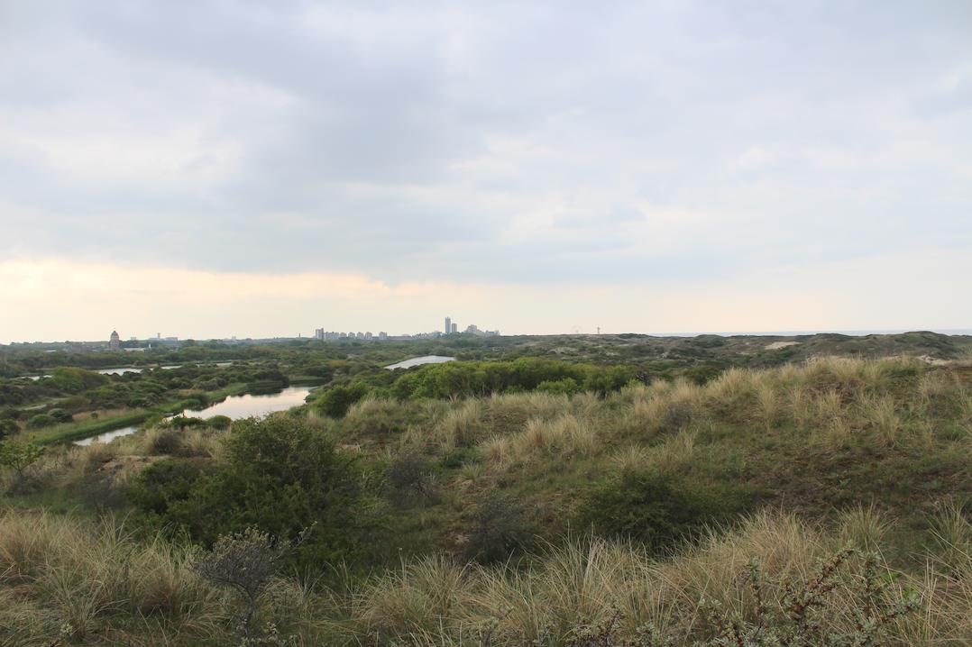 uitzicht den haag hollandse duinen.png