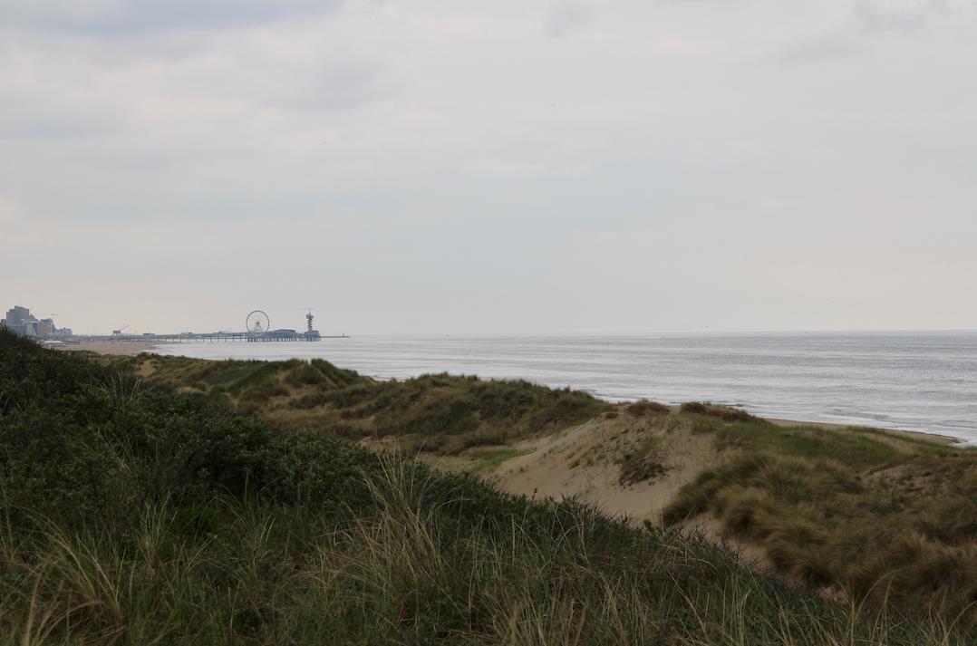 zicht op scheveningen hollandse duinen.png