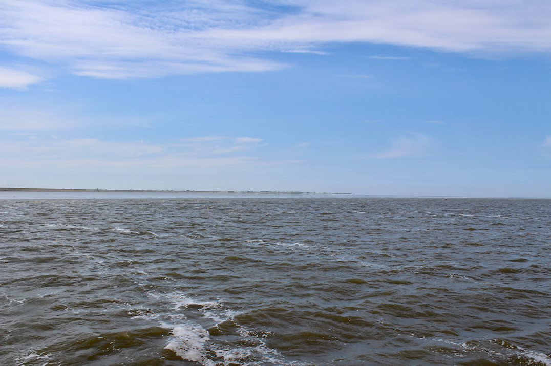 waddenzee.png