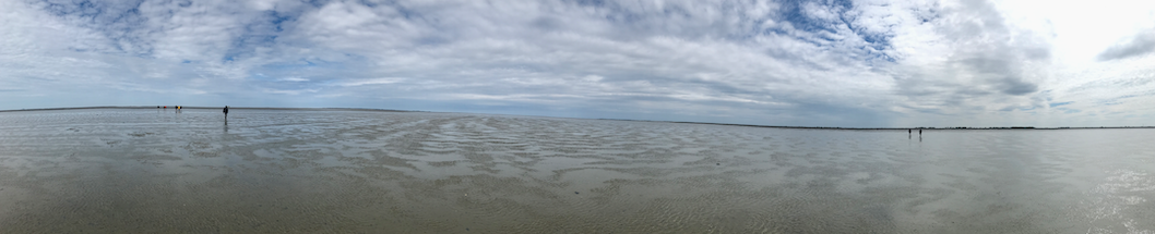 panorama waddenzee.png