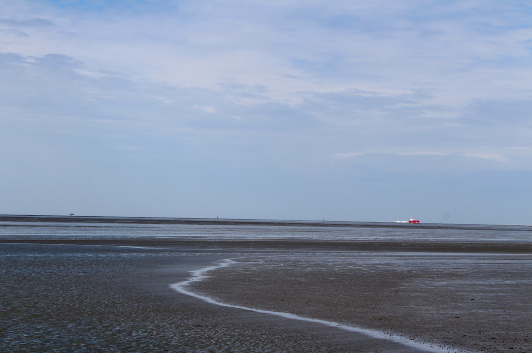 waddenzee wadlopen.png