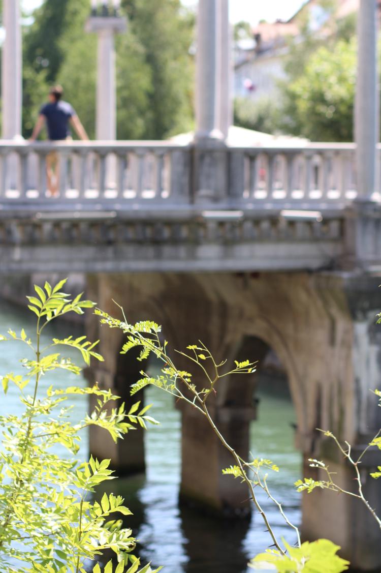 ljubljana river.png