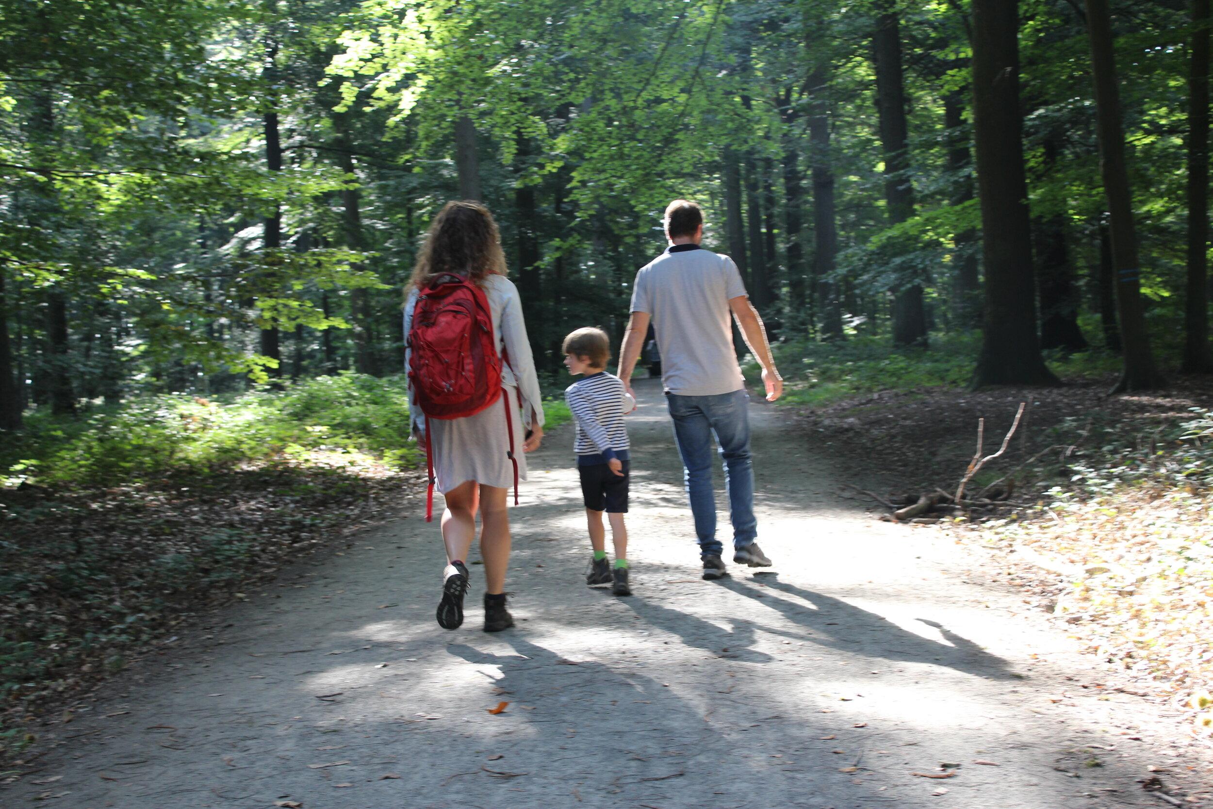 gezinswandeling buggenhout bos