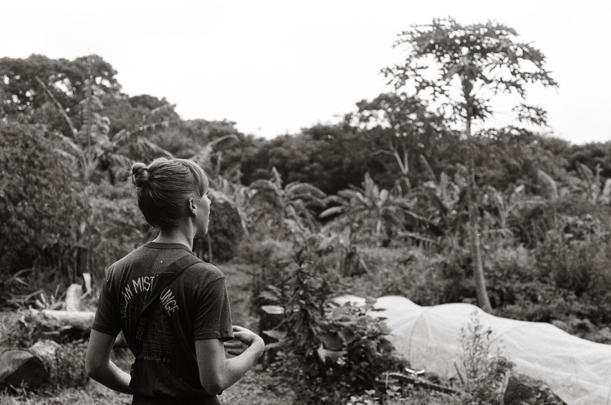 El Zopilote Permaculture Farm. Nicaragua, 2018.