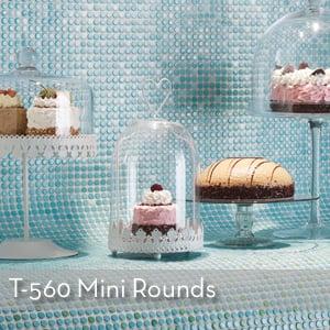 T-560 Mini Rounds.jpg