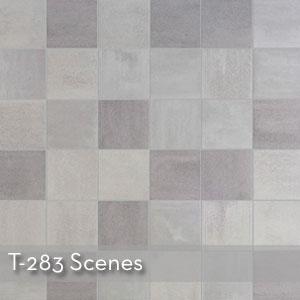 T283 SCENES.jpeg